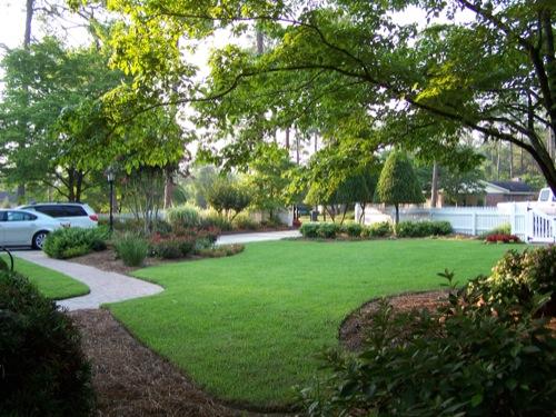 Olive Branch Landscape